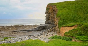 Cliff with green grass at seaside