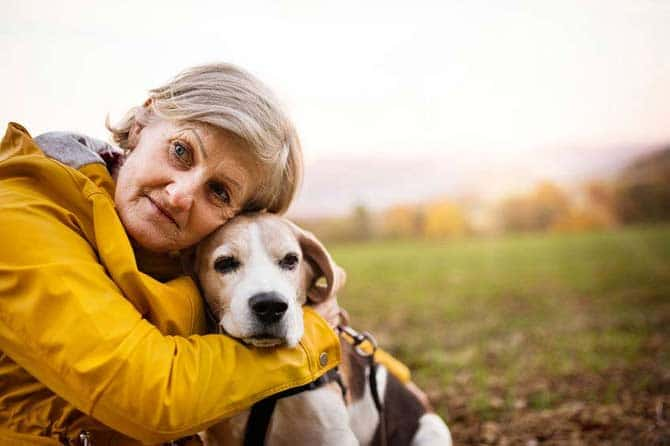 Senior woman hugging a beagle oiutside in a field